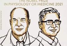 julius and patapoutian win 2021 nobel prize in medicine 1