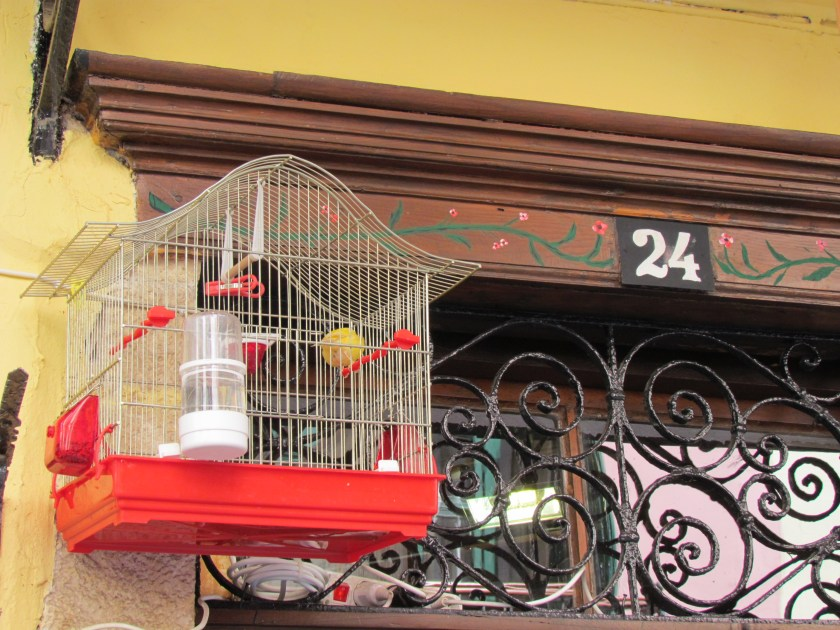Birdcage, old Chania