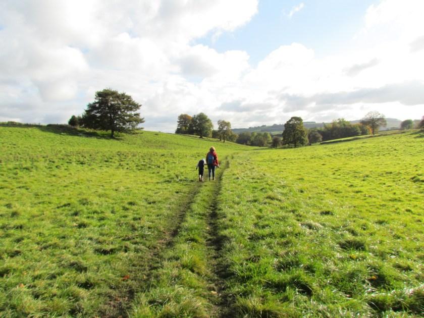 Walking through fields