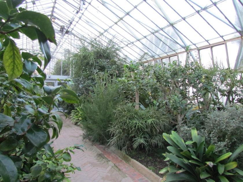 Greenhouse, Chatsworth