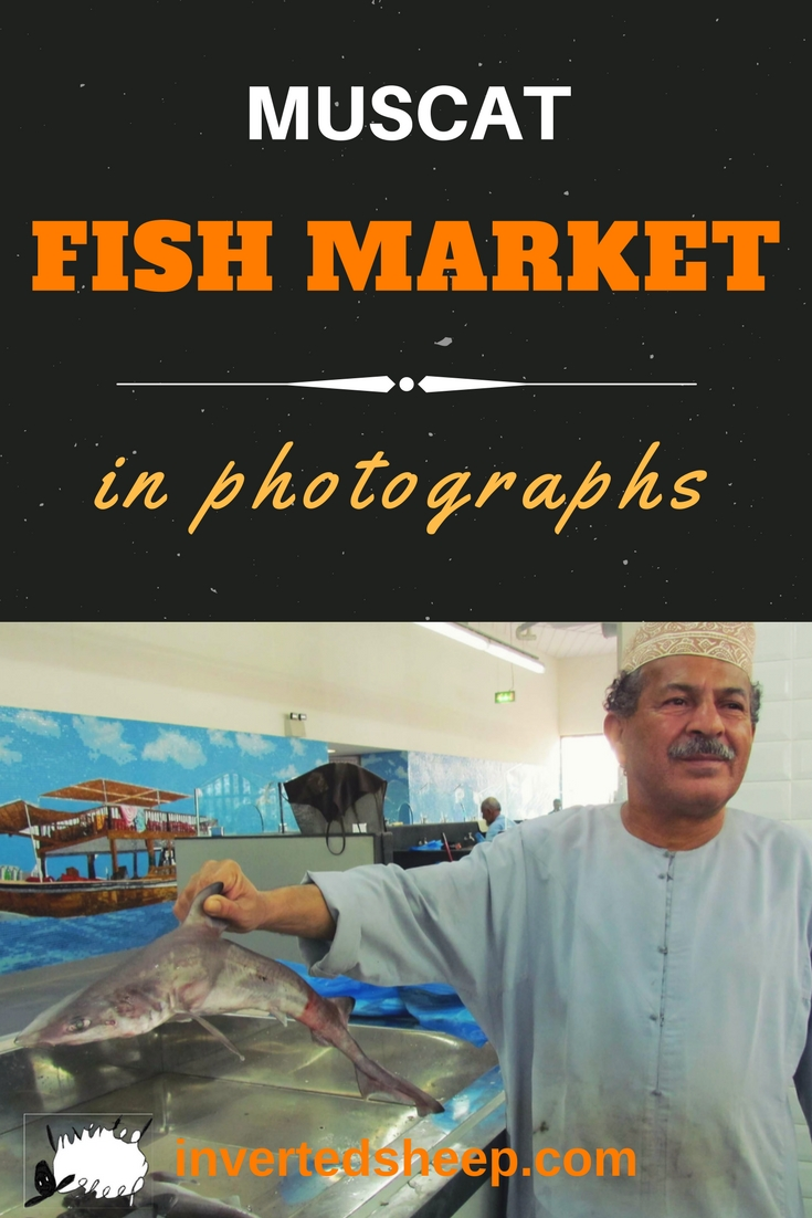Muscat Fish Market – A Photo Essay
