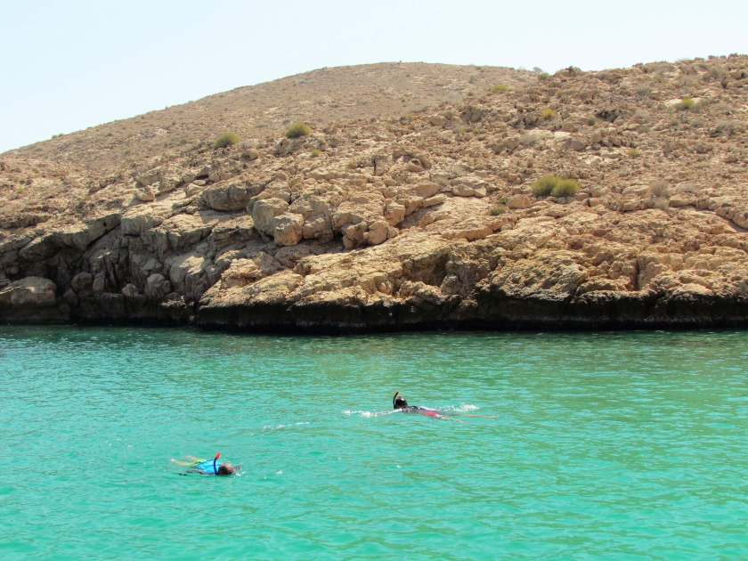 boat trip in the Gulf of Oman - snorkelling