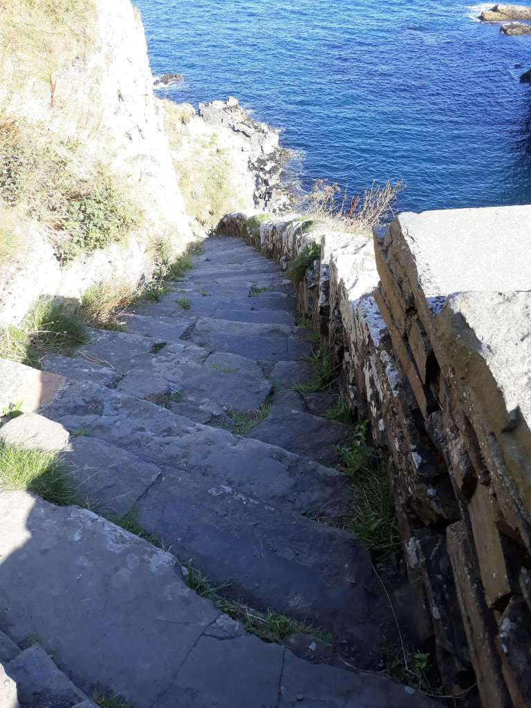 Whaligoe Steps Caithness - Inverted Sheep