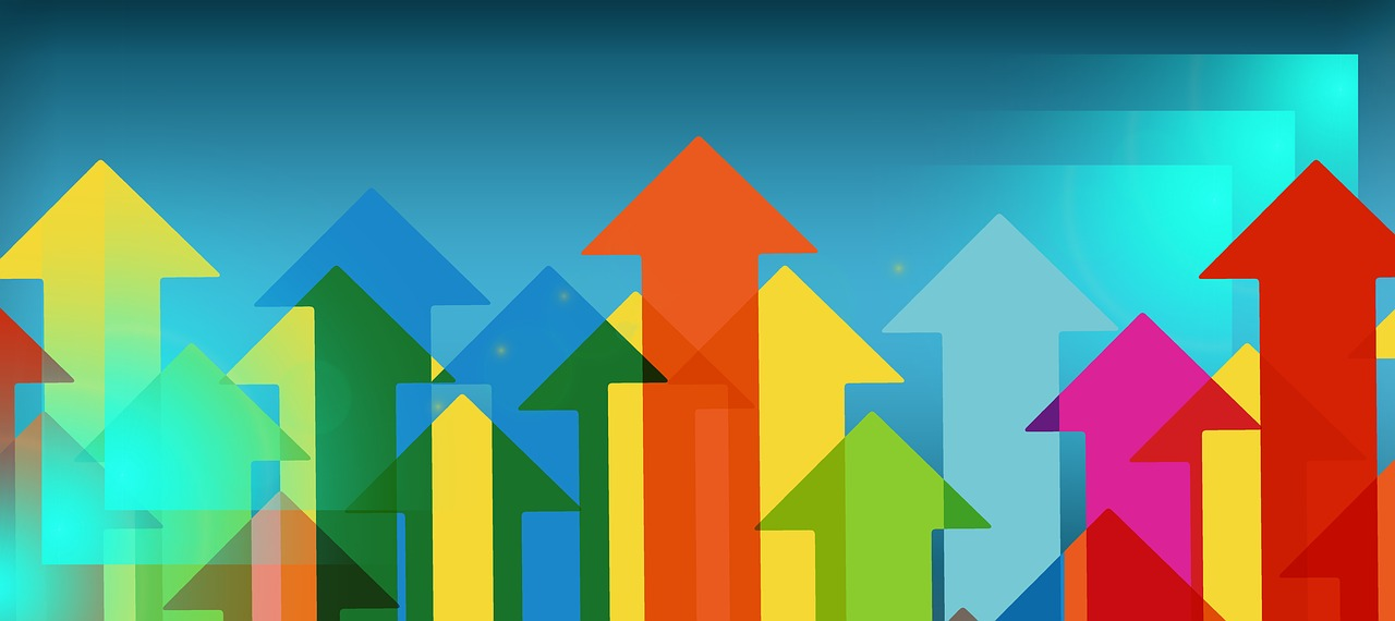 Le taux de rentabilité interne (TRI) : définition et calculs