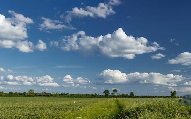 West Lindsey Landscape
