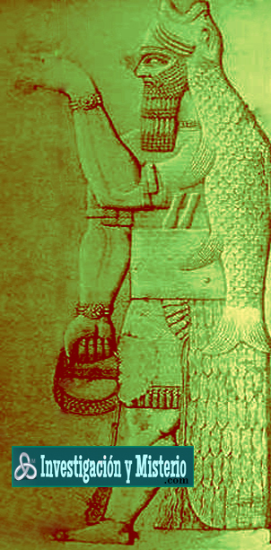 dioses pisciformes 3 - Apkallus o Anunnakis los antiguos dioses sumerios