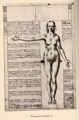 Fray Juan Andrés Rizi. Lámina de cuerpo de mujer. Foto: http://opusincertumhispanicus.blogspot.com.es
