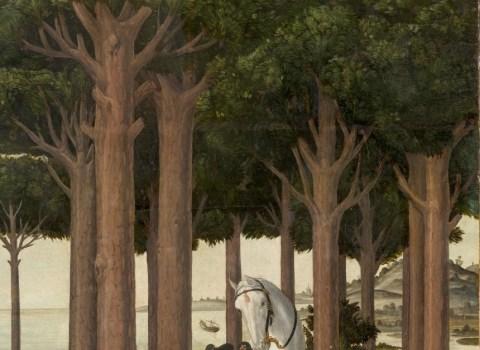 Botticelli. Historia de Nastaglio degli Onesti (detalle). Museo del Prado. Se puede apreciar los pinos piñoneros.