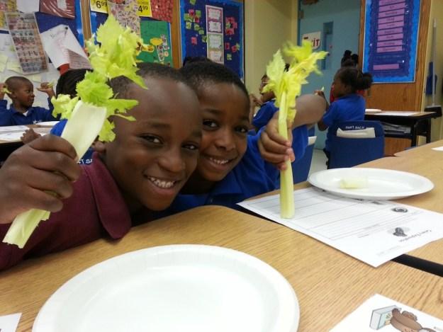 celery smaller