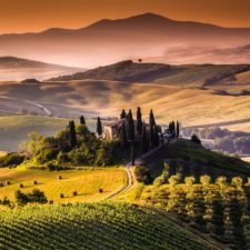 Tuscany, Italy Landscape - Investments
