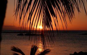 International Realty - Mauritius, Sunset, Palm Trees, Sea