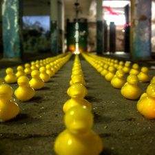 legal framework - ducks in a row