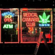 Cannabis-Investor