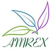 Investorideas Featured Company: American Growth Fund Series Two (AMREX)