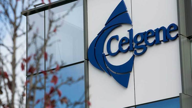 CELG - Celgene Corp Stock Options Prices - blogger.com