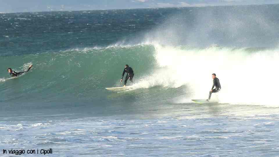 surf garden route
