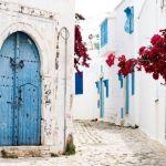 In viaggio verso la città blu di Sidi Bou Said