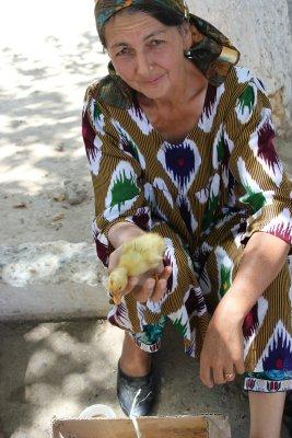 Venditrice di pulcini di anatra (Shakhrisabz, Uzbekistan)