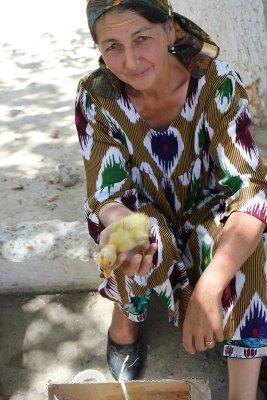 Viaggio in Uzbekistan, venditrice di pulcini di anatra al bazar di Shakhrisabz