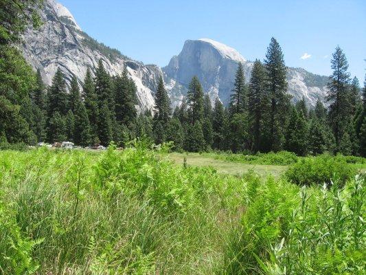 Tour dei Parchi, Half Dome (Yosemite NP, Stati Uniti)