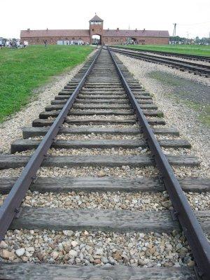 Viaggio della memoria ad Auschwitz Birkenau (Brzezinka, Polonia)