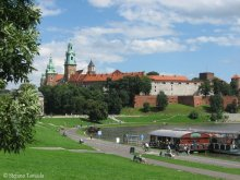 Castello Wawel Cracovia