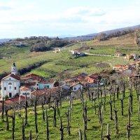Brda Collio Sloveno: itinerario tra borghi, colline e poeti
