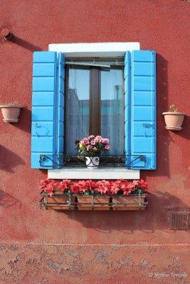 Finestra fiori Burano