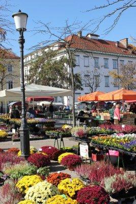 Il mercato dei fiori in piazza Vodnik a Lubiana