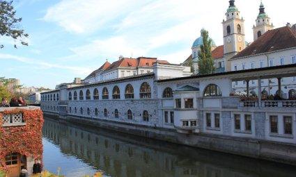 Tržnice, mercato al coperto Lubiana Slovenia