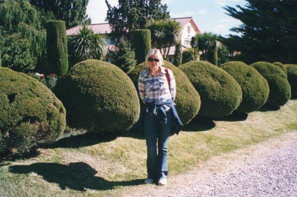 Giardini nella località di Gaiman in Patagonia