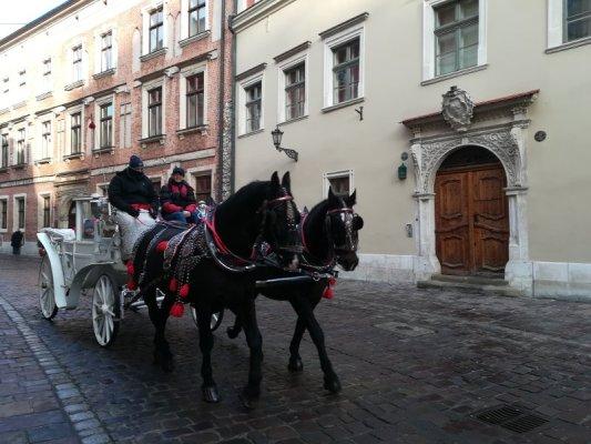 Stare Miasto Cracovia