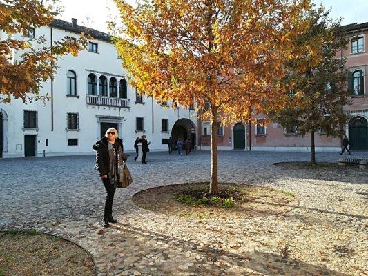 Piazza Rinaldi a Treviso