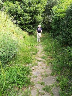 Il sentiero del Porton Ros a Cormons