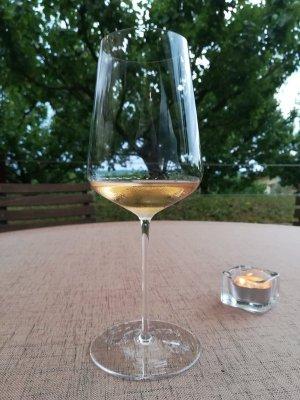 Pinot Grigio dell'azienda Marjan Simćić in Slovenia