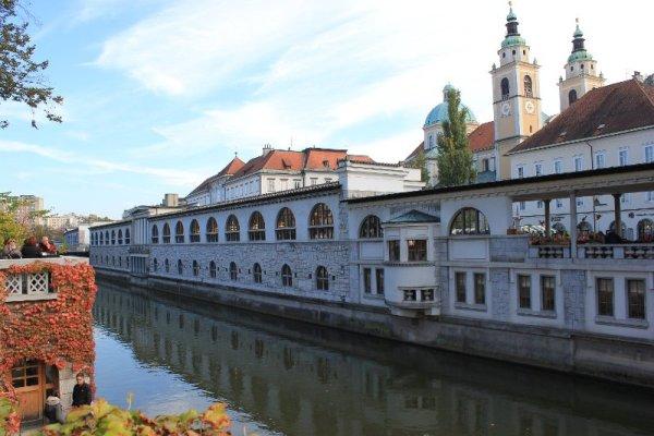 Il mercato coperto Tržnice a Lubiana in Slovenia