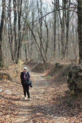 Un tratto del sentiero ad anello grande nel Bosco di Plessiva