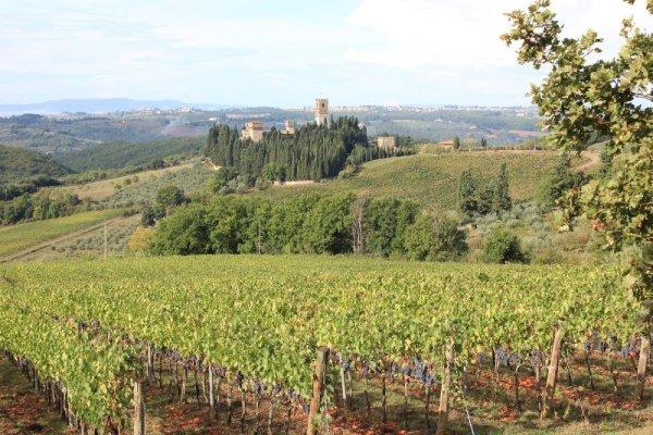 Panorama della Badia a Passignano