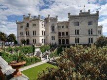 Visita al Castello di Miramare a Trieste