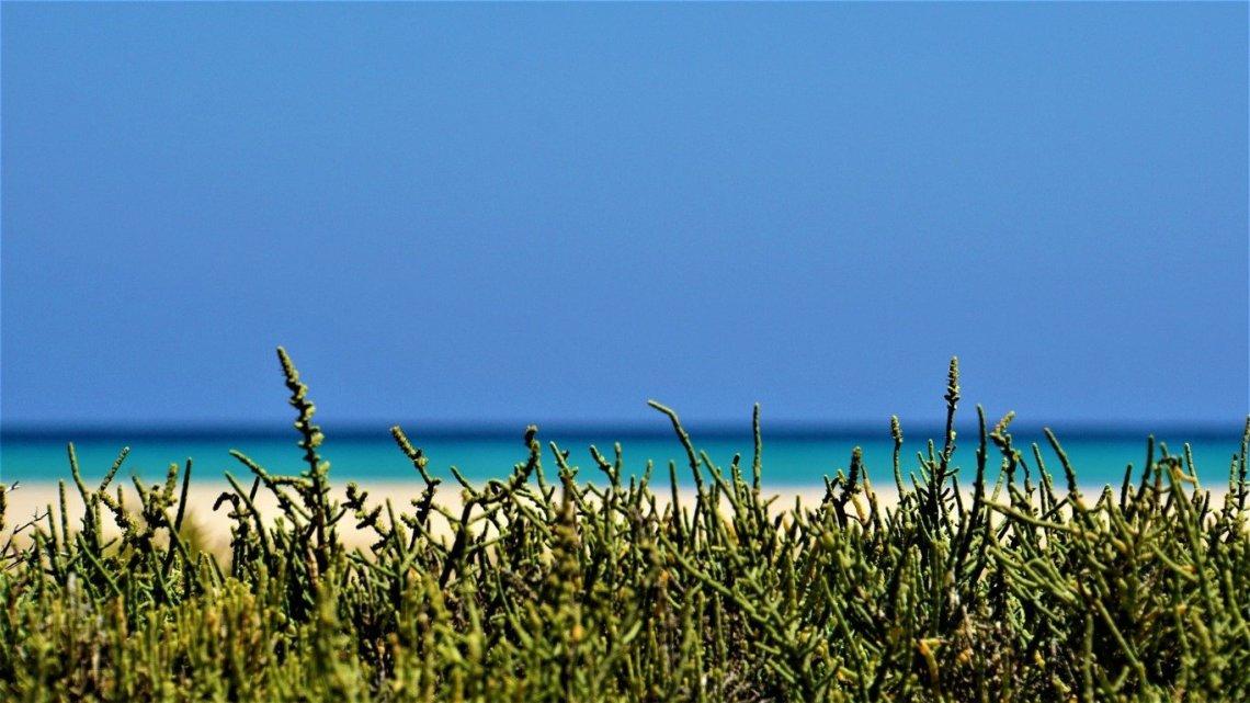 Fuerteventura on the road: 15 giorni alla scoperta dell'isola