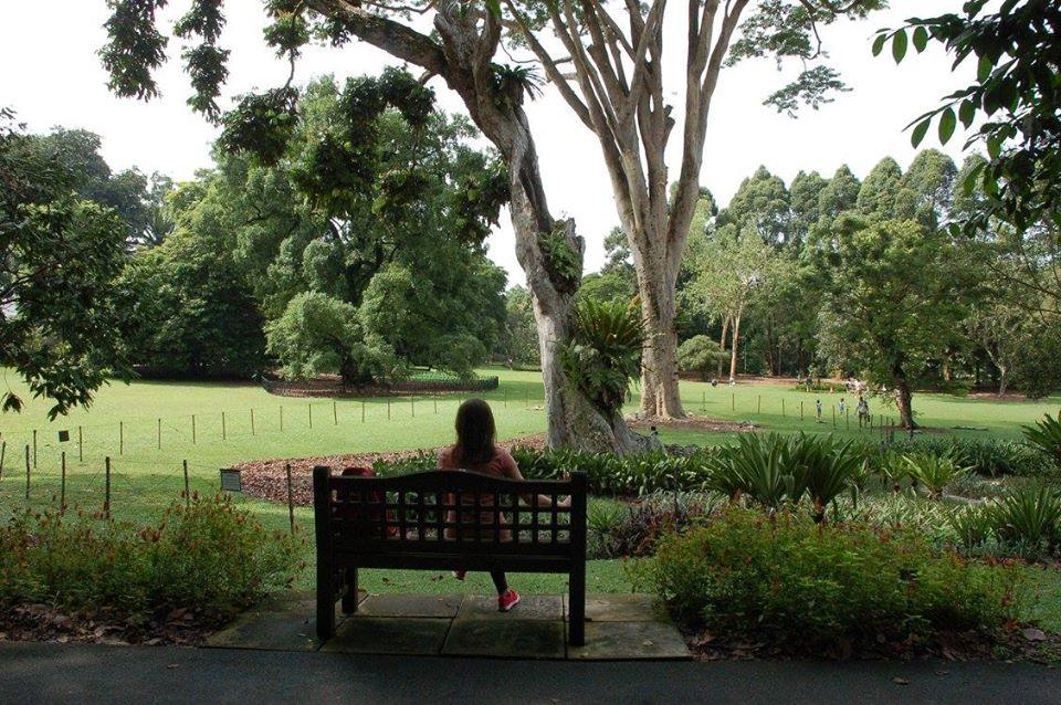 Giardini botanici Singapore
