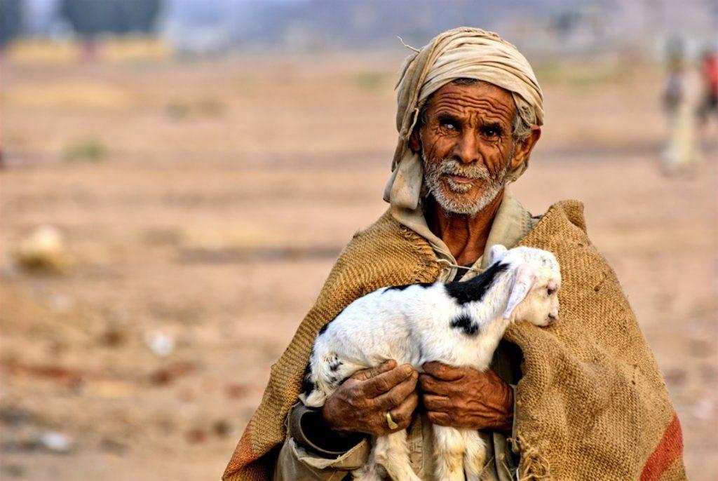 Beduino deserto