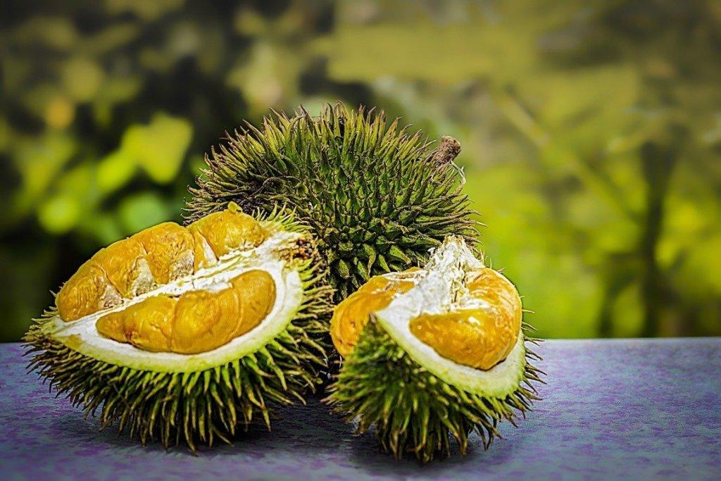 Durian sui mezzi pubblici Singapore