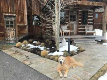 Family Time In Jackson Hole, Wyoming