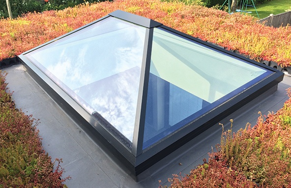 Green-Roof-Service