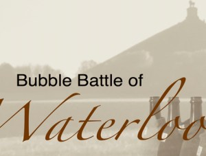 «Bubble Battle of Waterloo» : revanche française