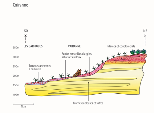 Coupe geologique (Cairanne) / Geological profile (Cairanne)