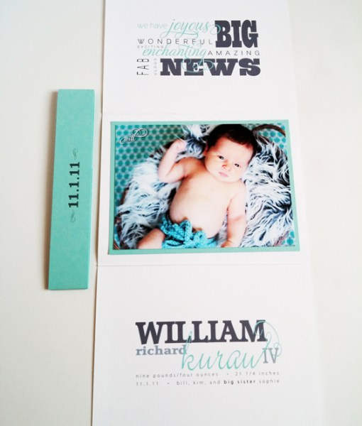William Birth Announcement