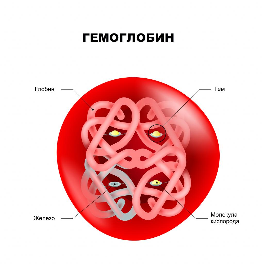 Трофиялық гастрит, эндроциттер эритроциттердегі ақуыздың жоғалуымен, 90 г / л-ге дейін, ал емдеу болмаған жағдайда, индикатор 85-90 бірлікке дейін төмендейді.