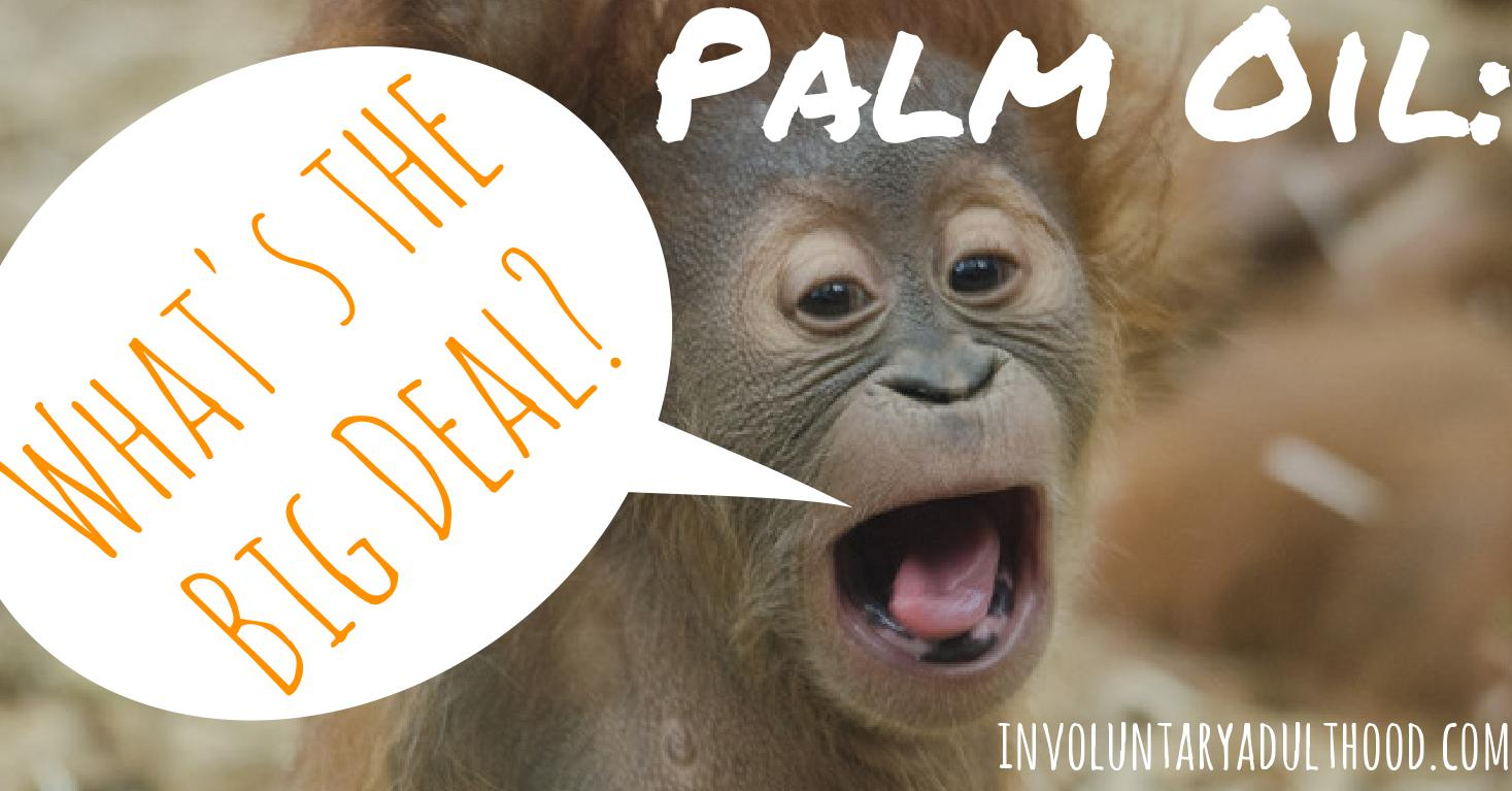 Palm Oil: What's the Big Deal?